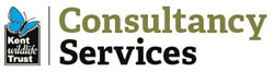 KWT Consultancy Services Logo